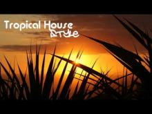 Embedded thumbnail for Tropical House Music (B Moll)