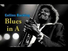 Embedded thumbnail for Chicago Blues Guitar Backing Track - Albert Collins Style in A 122 Bpm